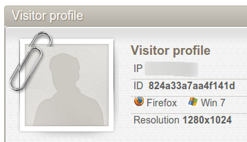 visitor_profile_widget